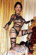 Mistress Trans Reggio Emilia Padrona Erotika Flavy Star 338.7927954 foto 7