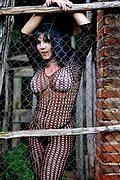 Mistress Trans Ancona Padrona Adriana 327.6216831 foto 7