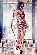 Mistress Trans Verona Lady Kimberly 333.2106477 foto 7